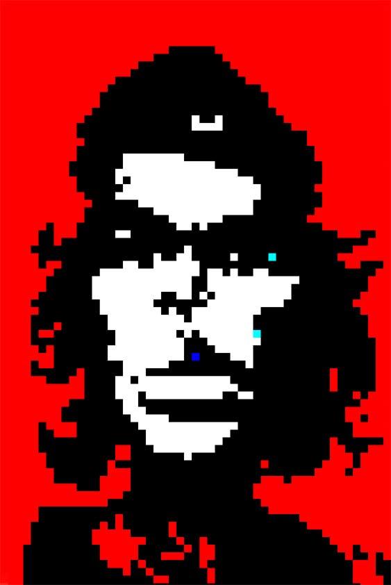 Che-Guevara-2010-2.4
